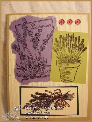 multi-lavender09w