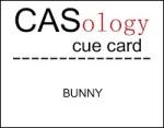 caso 34 - Bunny