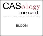CASo 44 - Bloom
