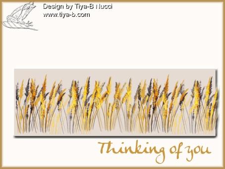 gold-grasses