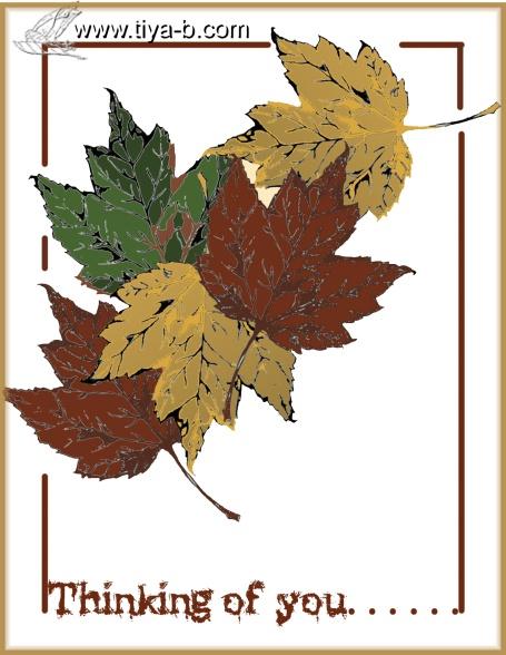 5-leaves