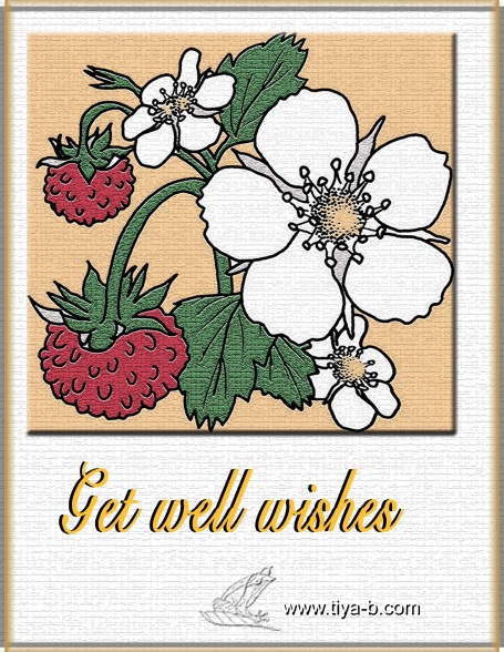 strwberry-gw