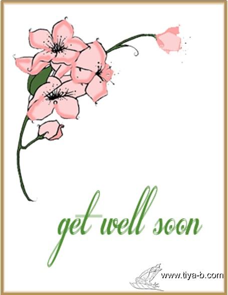 blossom-well