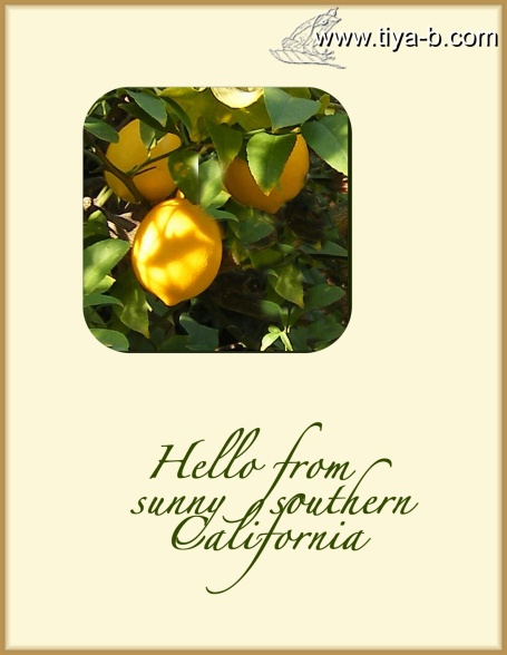socal-lemon