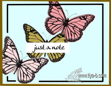 butterfly-notes