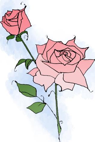pink-vin-rose