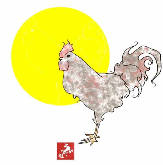 close-sun-rooster