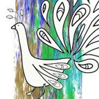peacock-sqr
