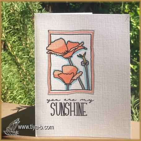 poppy-orangeblu