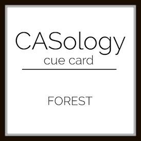 casop-231-forest