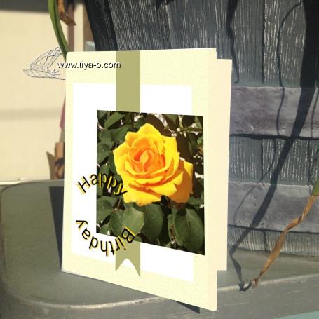 rosey-bday.jpg