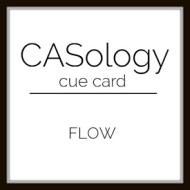 caso247 - Flow