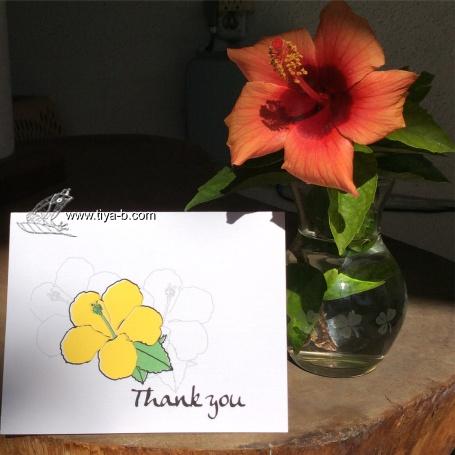 hibiscus-thanks-17