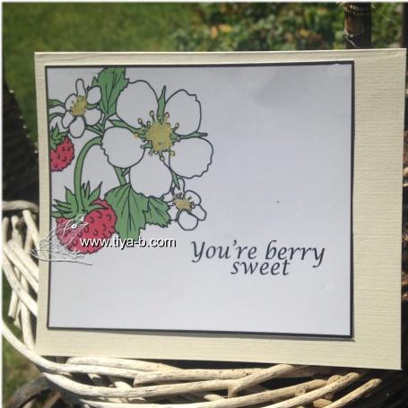 berries-white