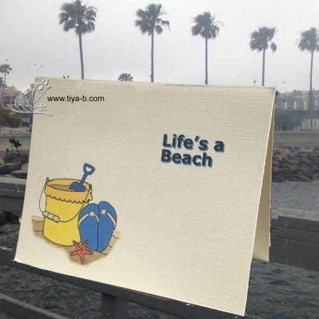 lifesa-beach