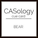 caso 306 –Bear
