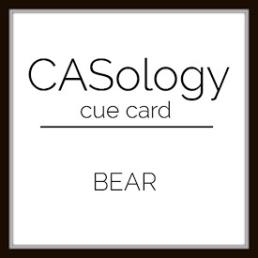 caso 306 - Bear