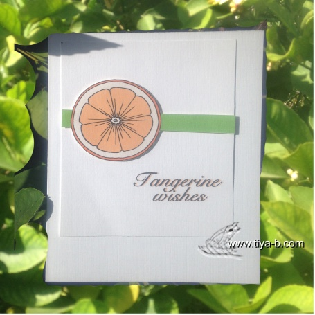 tangerine-wishes